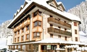 Hotel Al Gallo Forcello – Passo Pramollo