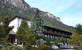 Hotel Regina Delle Dolomiti S Bazénem – Panchia
