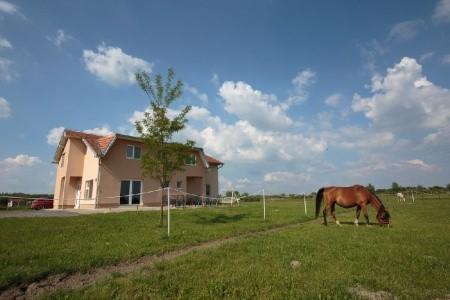 Ubytování Bilje (Slavonija) – 14318