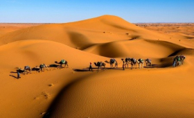Maroko na Silvestra – Od Atlantiku přes Saharu i Vysoký Atlas