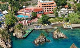 Ostrov Ischia, Itálie – Delfini