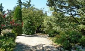 L'oasis Provencale (Avi120)
