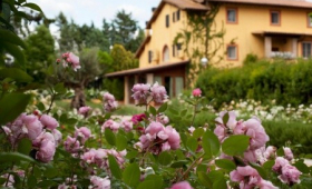 Hotel Graden Resort S Bazénem Pig – Assisi